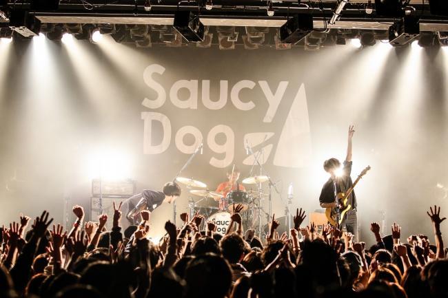 Saucy Dog  撮影=白石達也